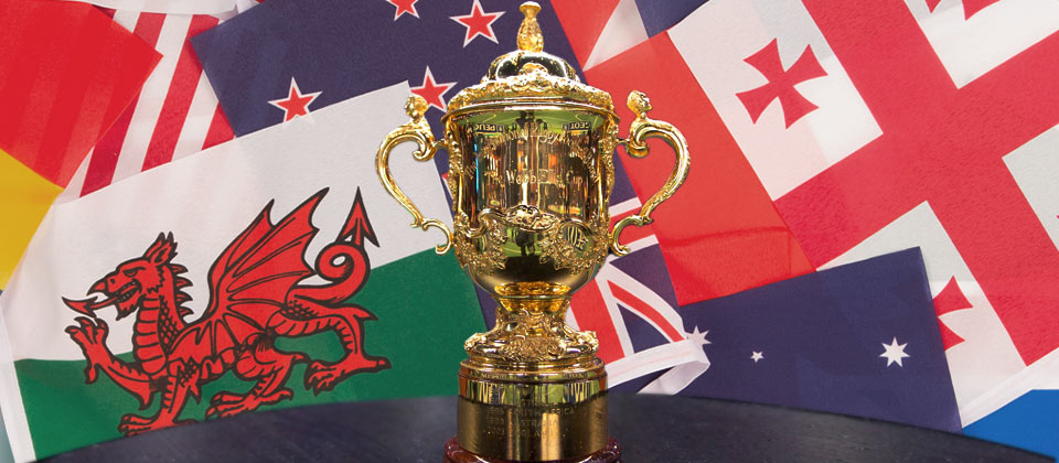 rugby world cup 2015 sweepstake