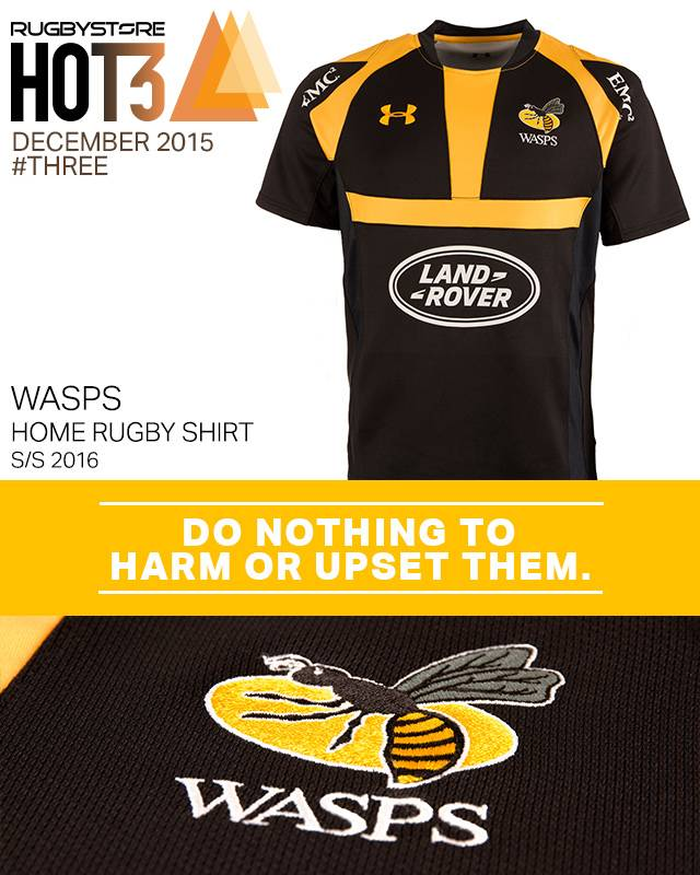 hot3-Wasps-post-image